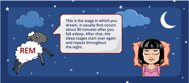 REM Sleep: This is the stage in which you dream. It usually first occurs about 90 minutes after you fall asleep. After that, the sleep stages start over again and repeat throughout the night.